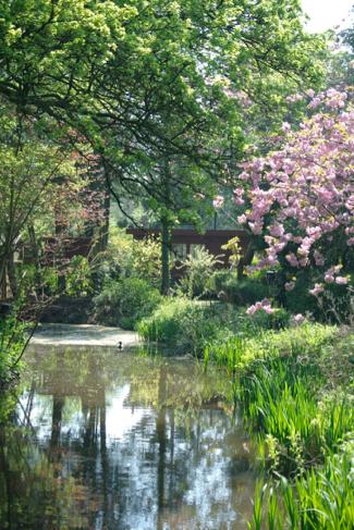 amstelglorie-bloesem-tuinpark